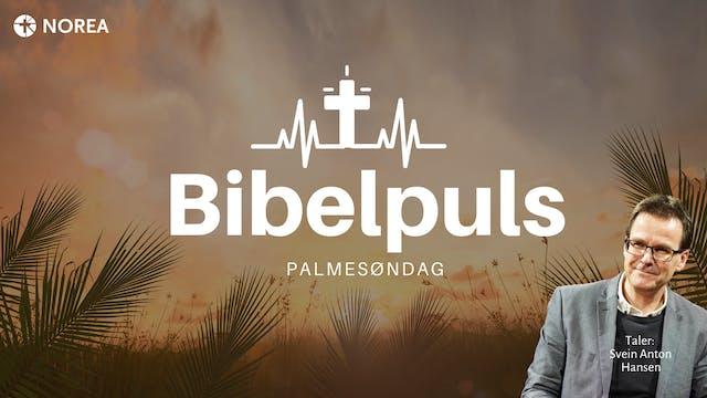 Bibelpuls 4 | Jesus ofret alt for Maria