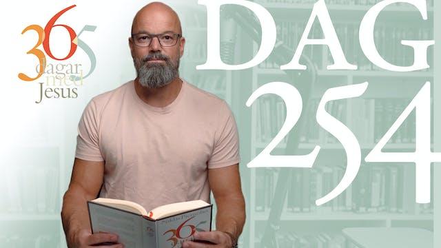 Dag 254: Nåd | 365 dagar med Jesus