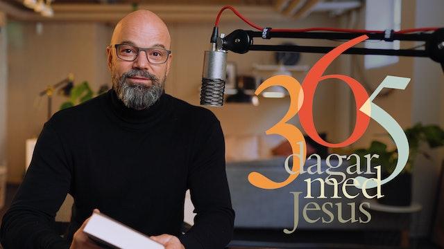 365 dagar med Jesus - nya dagliga andakter med Niklas Piensoho