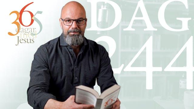 Dag 244: Tro | 365 dagar med Jesus