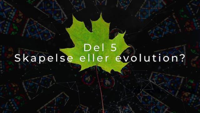 Del 5 | Vad är det vi tror på?