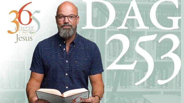 Dag 253: Kärlek | 365 dagar med Jesus