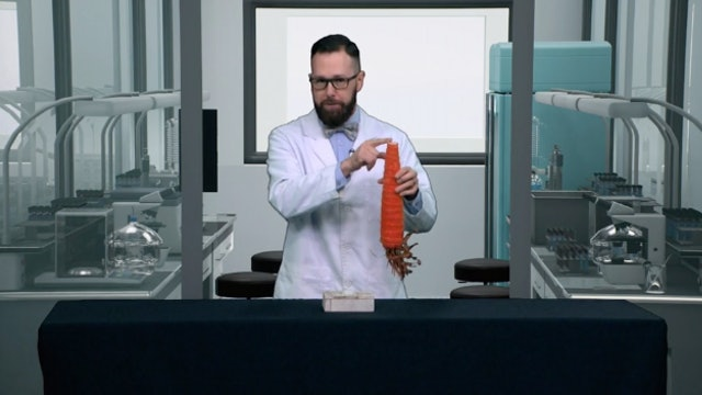Soaring Carrot (The Ultimate Launch) | Beyond the Science Lab