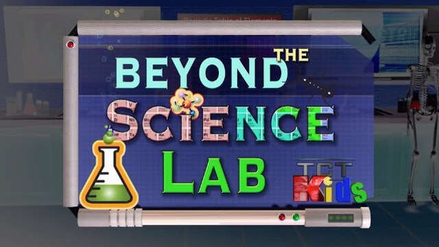 Beyond the Science Lab