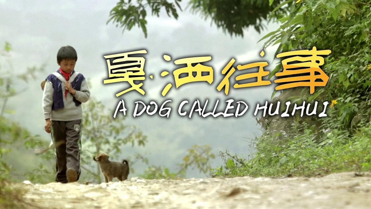 A Dog Called Huihui