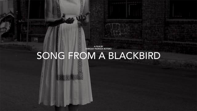 Song from a Blackbird