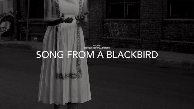 Song from a Blackbird