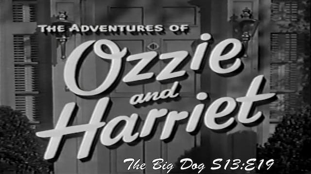 "Ozzie & Harriet ""The Big Dog"""