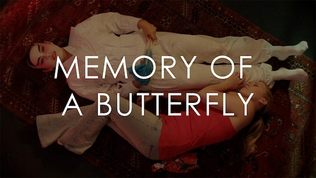 Memory of a Butterfly