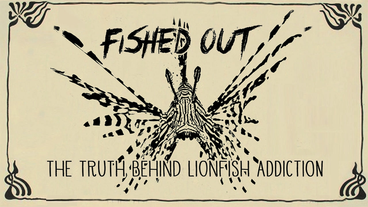 Fished Out: The Truth Behind Lion Fish Addiction