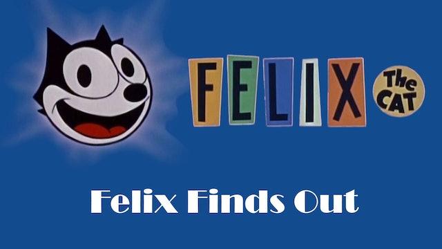 Felix the Cat: Felix Finds Out