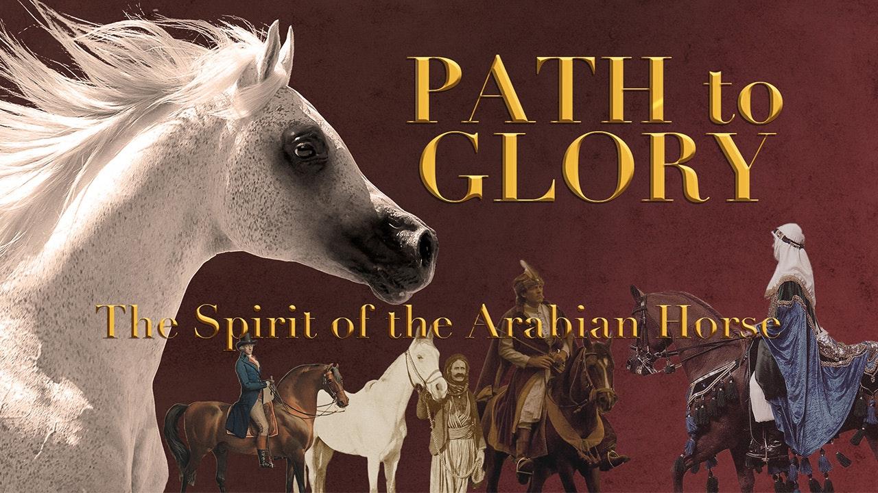 Path to Glory: Spirit of the Arabian Horse