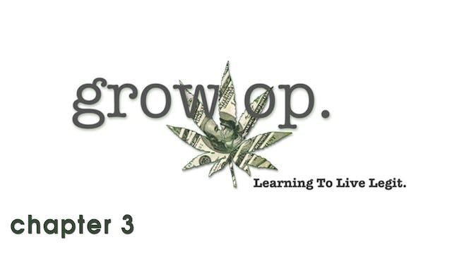 Grow Op: Chapter 3 - Smells Like Ballsweat…
