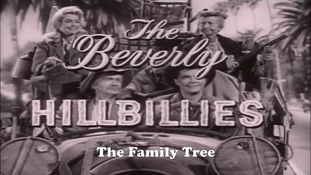 "Beverly Hillbillies ""The Family Tree"""