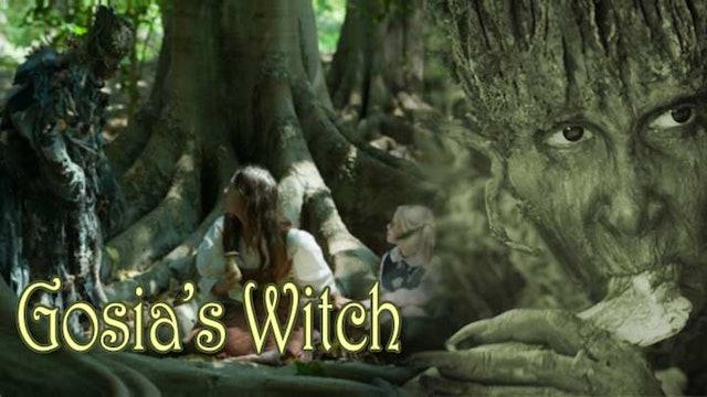 Gosia's Witch