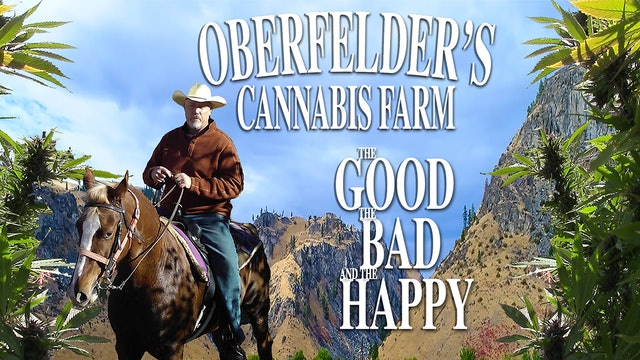 Oberfelder's Cannabis Farm, the Good, the Bad and the Happy