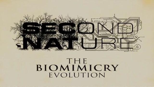 Second Nature: The Biomimicry Evolution