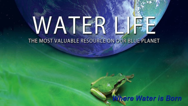 Water Life - Where Water is Born