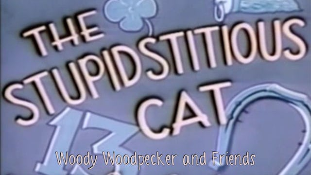 Woody Woodpecker and Friends: The Stupidsticious Cat