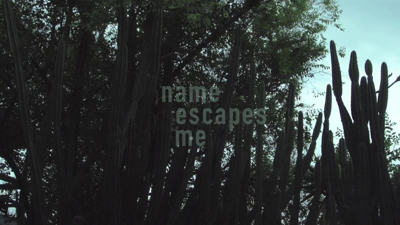 Name Escapes Me