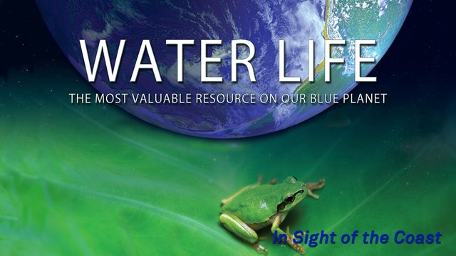 Water Life -  In Sight of the Coast
