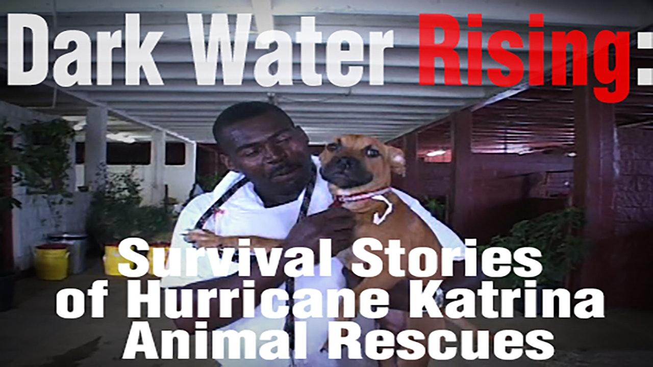 Dark Water Rising: Survival Stories of Hurricane Katrina Animal Rescues