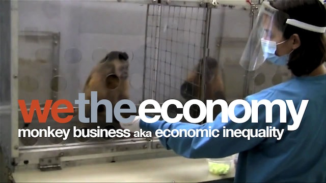 We The Economy: Monkey Business AKA Economic Inequality