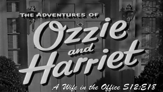 "Ozzie & Harriet ""A Wife in the Office"""