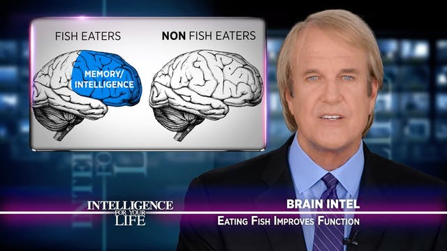 Eating Fish Improves Brain Function