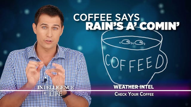 Weather Affects Your Coffee