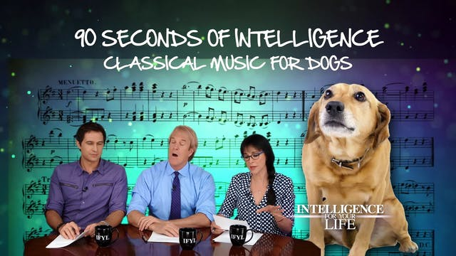 90 Seconds: Classical Music For Dogs