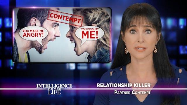Partner Contempt