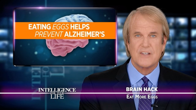 Eat More Eggs To Keep Your Brain Cells Young
