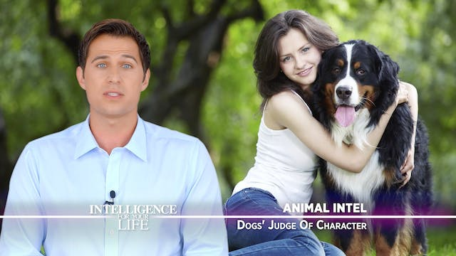Dogs Judge Character Accurately