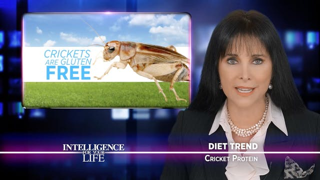 Would You Eat Cricket Protein?