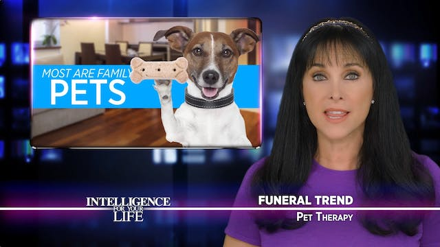 Pet Therapy At Funerals