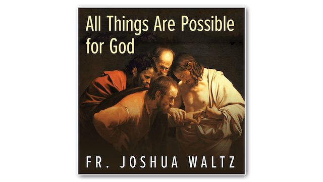 All Things are Possible for God by Fr. Joshua Waltz