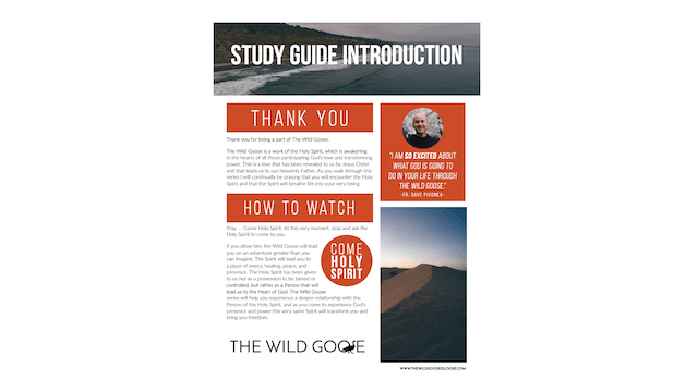 The Wild Goose Study Guide