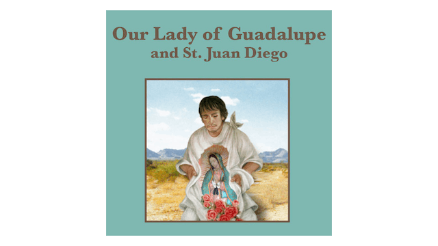 Truth to Inspire: Our Lady of Guadalu...