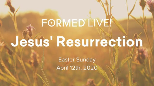 FORMED Now! Easter Sunday - Jesus' Re...