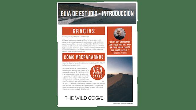 The Wild Goose, Guía de estudio