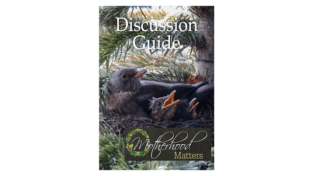 Motherhood Matters Discussion Guide