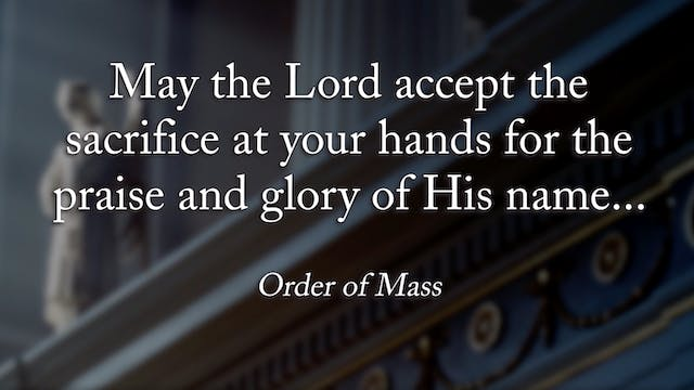 FORMED Daily: The Purpose of the Mass