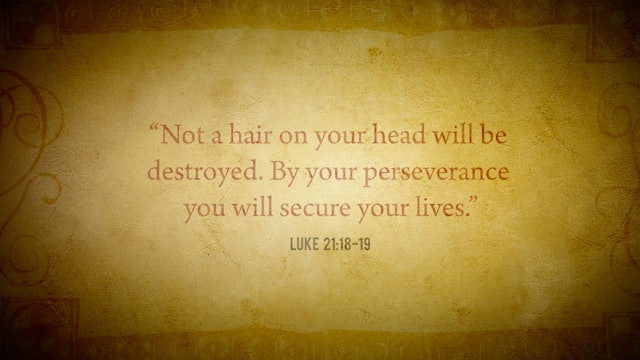 """FORMED Daily: """"By your perseverance you will secure your lives."""""""