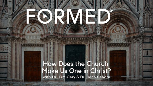 FORMED Now! How Does the Church Make ...