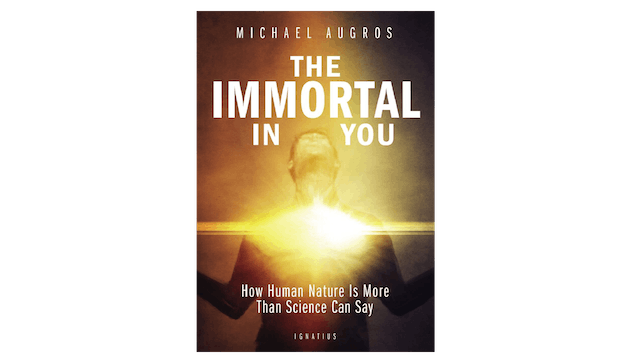 The Immortal in You by Michael Augros