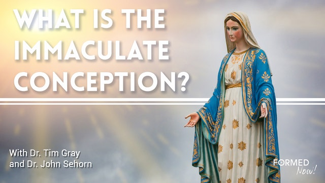 What is the Immaculate Conception?