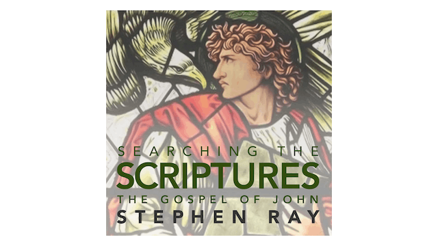 Searching the Scriptures: The Gospel ...