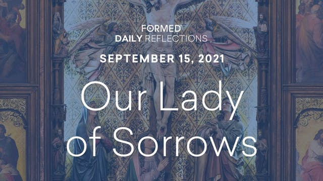 Daily Reflections – Feast of Our Lady...
