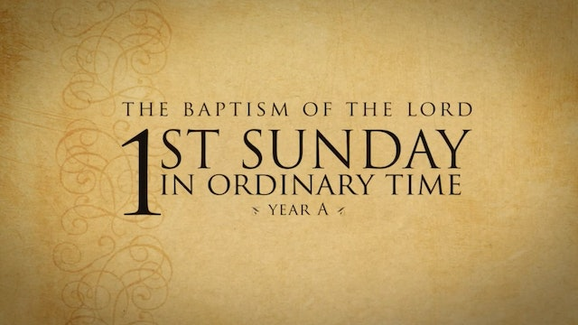 FORMED Daily: Opening the Word